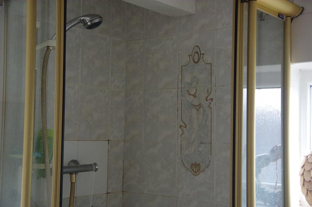 shower-resized